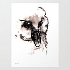 Cygnet Art Print