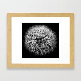 Folgore Framed Art Print