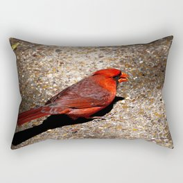 # 234 Rectangular Pillow