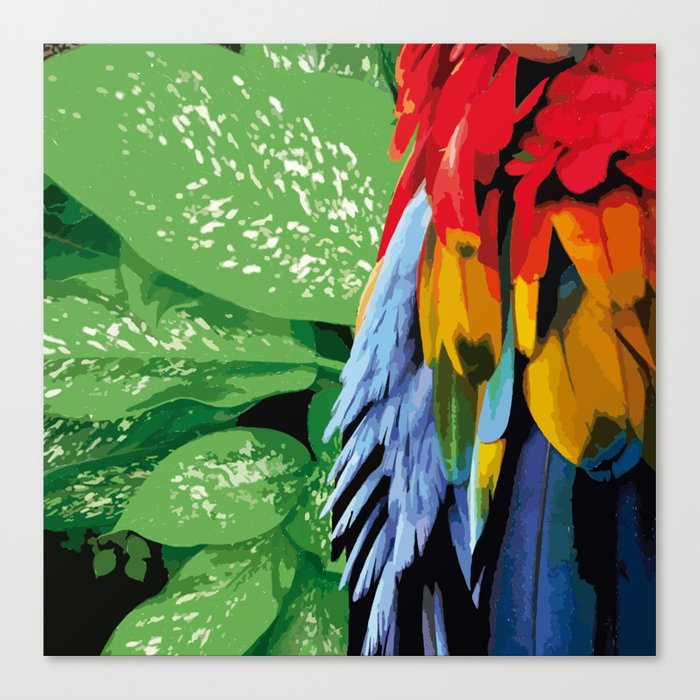Brasil Tropical Canvas Print