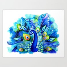 Peacock in Full Bloom Art Print