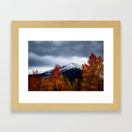 early winter Framed Art Print
