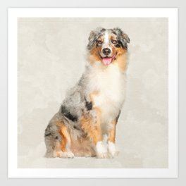 Australian Shepherd - Blue Merle Watercolor Digital Art Art Print