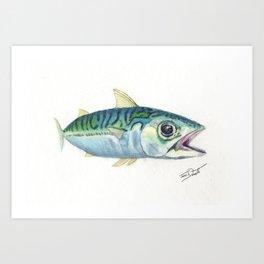 Mackerel Study Art Print