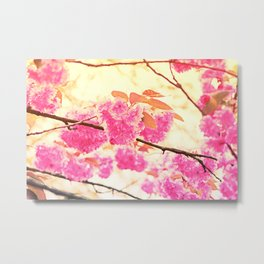 Pink Pushy Power Metal Print
