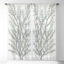 Herbal Design, Botanic Gift Sheer Curtain