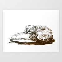 shih tzu Art Prints featuring Little Shih Tzu by Louise Hubbard