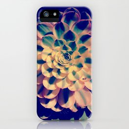 Nature´s mathematic iPhone Case
