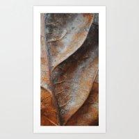 Up Close Art Print