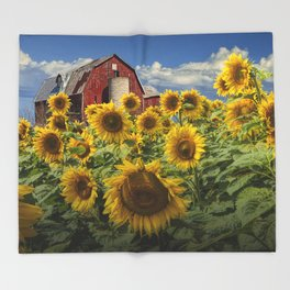Golden Blooming Sunflowers with Red Barn Throw Blanket
