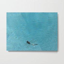 BUG ON THE WATER Metal Print