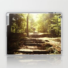 Up the Down Stairs Laptop & iPad Skin