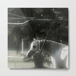 In captivity Metal Print