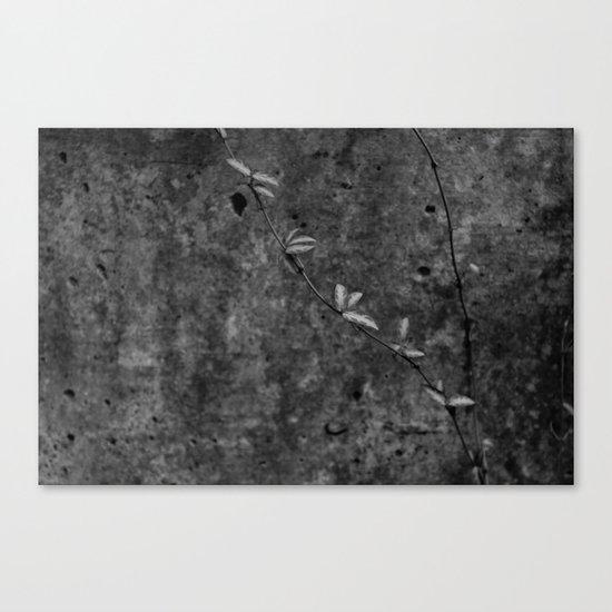 Leaf Trail Canvas Print