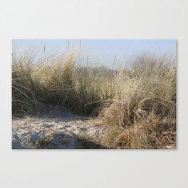 Wild Landscapes at the coast 2 Canvas Print