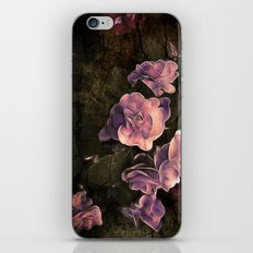 The Rough and the Smooth iPhone & iPod Skin