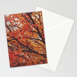 Autumn Falling Stationery Cards