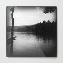 Lake Minerva #5 Metal Print
