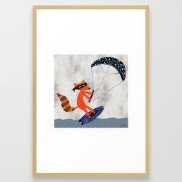 Kite Surfing Raccoon Bandit Framed Art Print