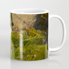 Micro World, Sleep of Little Maiden, flower in moss Coffee Mug