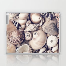 Vintage  Sea Shell Collection Coastal Style Laptop & iPad Skin
