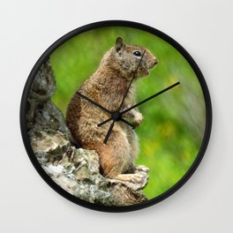 Hey Batter Batter Batter Wall Clock