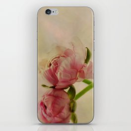 Falling in Love with rose flowers iPhone Skin