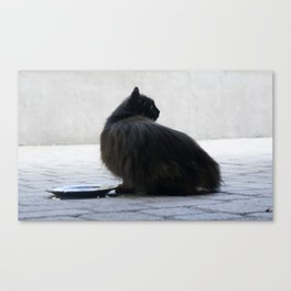 Lucy II Canvas Print