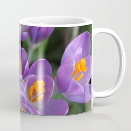 Bunch of Crocus Coffee Mug