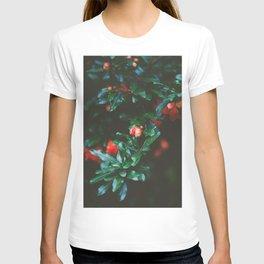 Pomegranate Study, No. 1 T-shirt