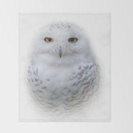 Dreamy Encounter with a Serene Snowy Owl Throw Blanket
