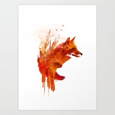 Plattensee Fox Art Print