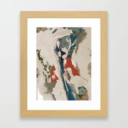 Birdseye Framed Art Print