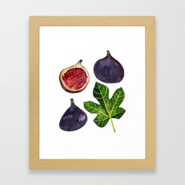 Figs Fruity Botanical Gouache Painting Framed Art Print