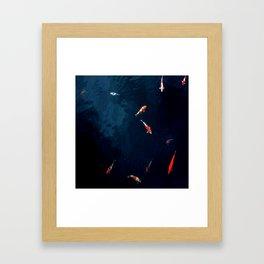 Koi Around Framed Art Print