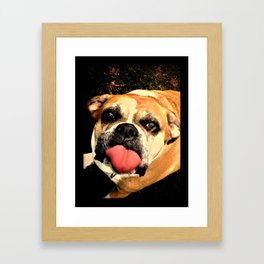 Boxers Are Awesome! Framed Art Print