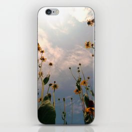 MAUA iPhone Skin