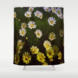 Field of Daisies by Aloha Kea Photography Shower Curtain