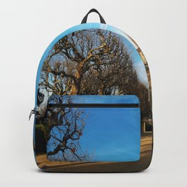 Bare trees alley Backpack
