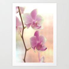 Orchid Ⅰ Art Print
