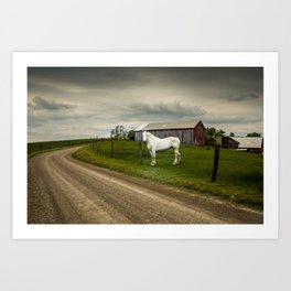 Big White Horse Art Print