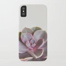 Purple Succulent iPhone Case