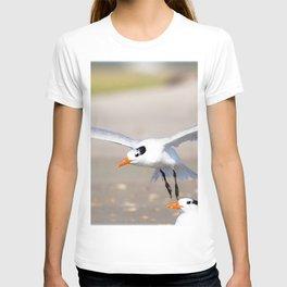 Watercolor Bird, Royal Tern 07, Janes Island, Maryland T-shirt