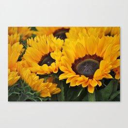Golden Sunflowers Canvas Print