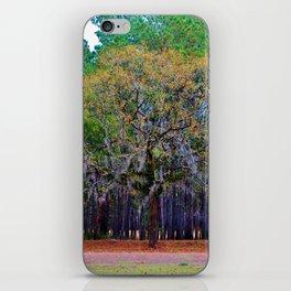 Pine Tree Landscape iPhone Skin