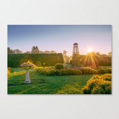 Early morning in the garden Canvas Print