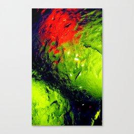 Macroscopic part 5 Canvas Print