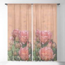 Cacti in Bloom - 5 Sheer Curtain