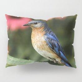 Perched Eastern  BlueBird Pillow Sham