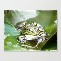 frog Canvas Prints featuring frog by Karl-Heinz Lüpke